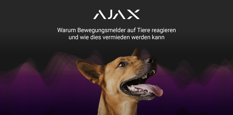 ajax-tierimmun